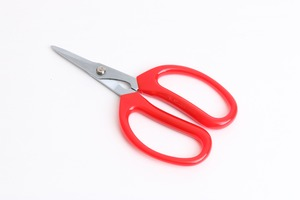 Darlac Softies Scissors