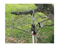 Darlac Expert Tree Pruning Special Offer