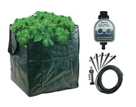 Patio Potato Growing Special Offer