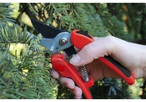 Darlac Compound Action Pruner