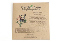 Sweet Pea - Eckford Mix't Seeds
